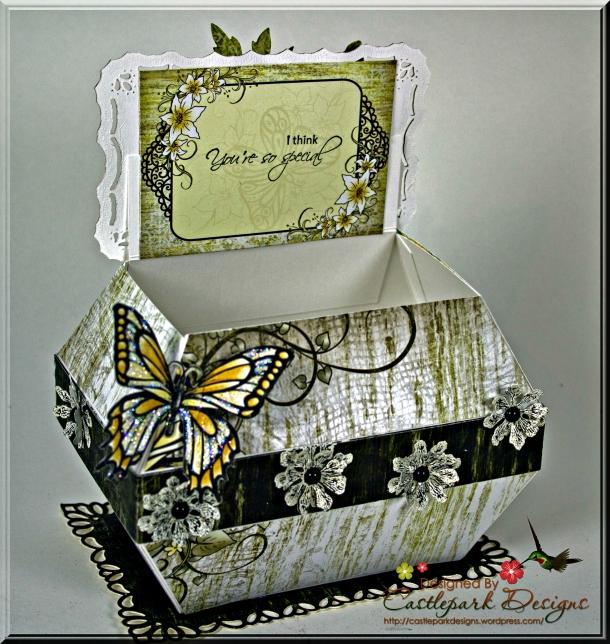 Joann-Larkin-Butterfly-Box-Open