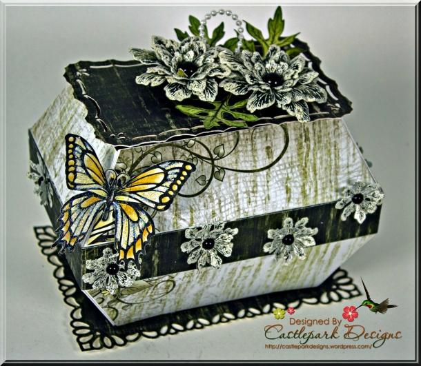 Joann-Larkin-Butterfly-Box