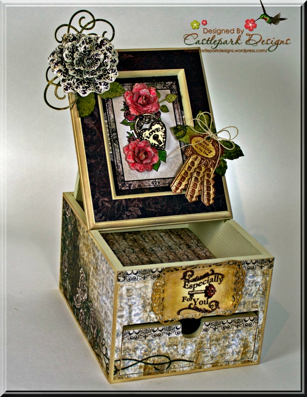 Joann-Larkin-Altered-Box-Open
