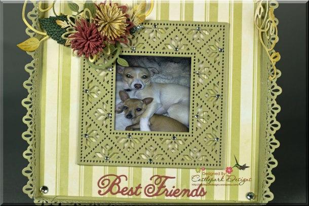 Best-Friends-Closeup