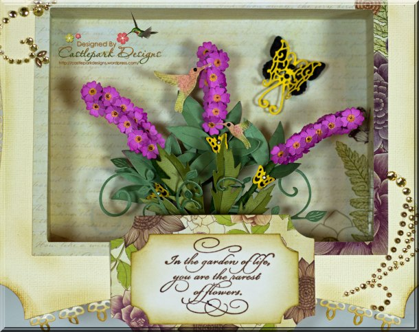 Butterfly-Box-Closeup