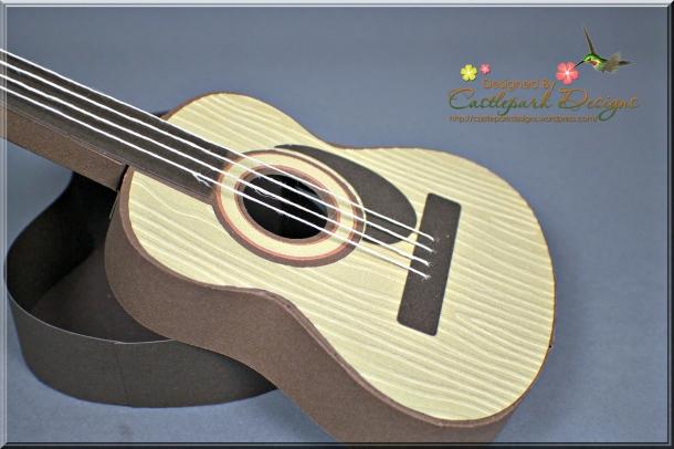 Joann-Larkin-Guitar-Box-Closeup