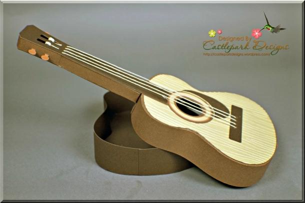 Joann-Larkin-Guitar-Box-Open