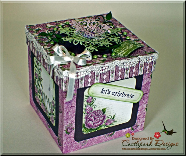 Joann-Larkin-Photo-Box