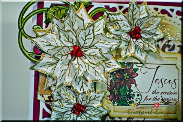 Joann-Larkin-Jesus-is-the-Reason-Flower