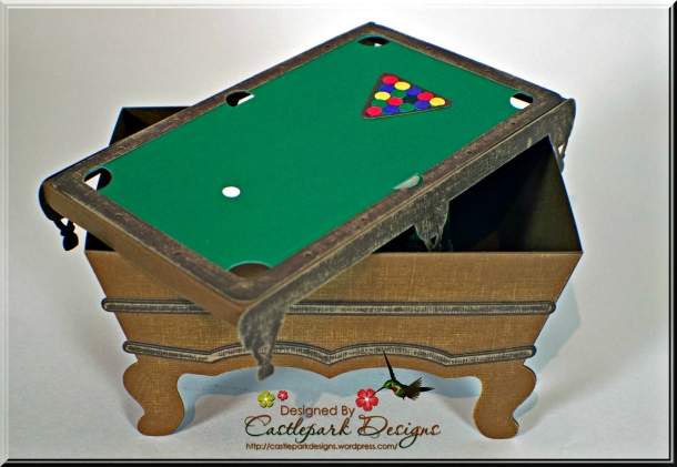 Joann-Larkin-Pool-Table-Open
