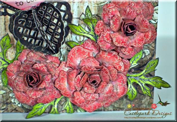 Joann-Larkin-Inside-Explosion-Flowers