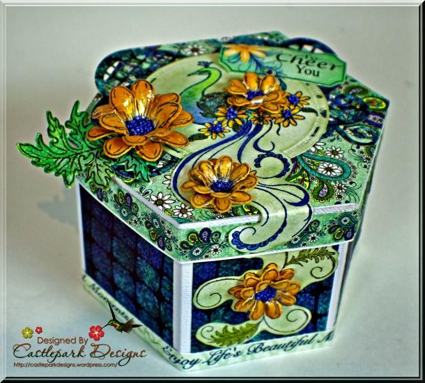 Joann-Larkin-6-Sided-Box