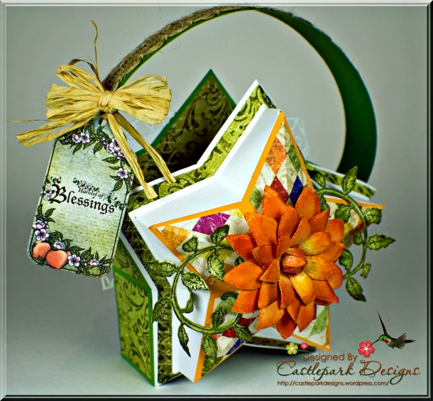 Joann-Larkin-Farmers-Market-Star-Shaped-Gift-Bag