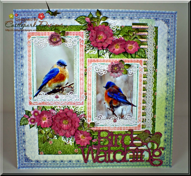Joann-Larkin-Bird-Watching-Layout