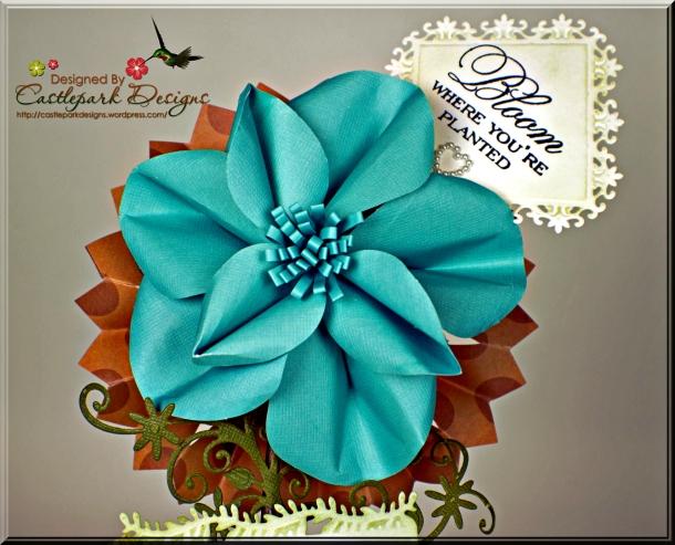 Joann-Larkin-Mother's-Day-Plant-Flower