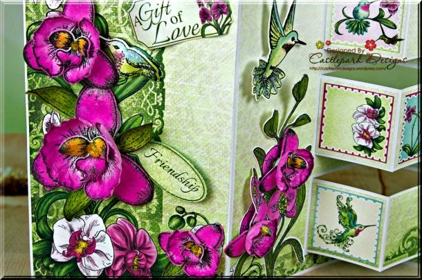 Joann-Larkin-Botanic-Orchid-Gift-Of-Love-Closeup