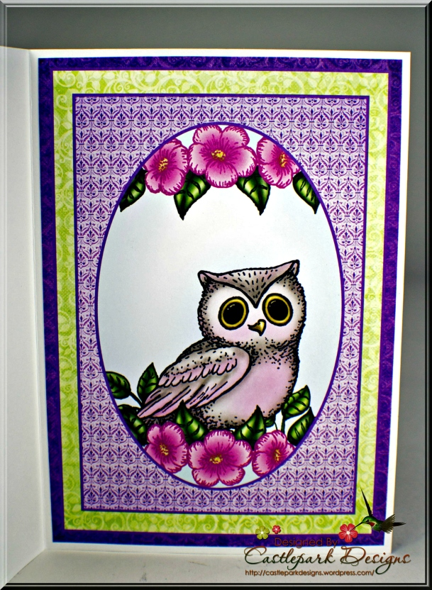 Joann-Larkin-Youre-A-Hoot-Inside