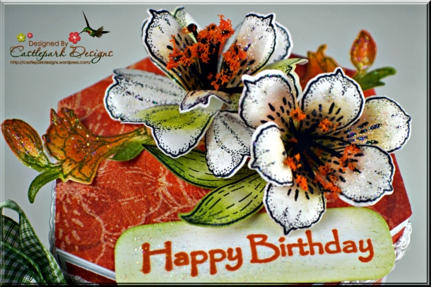 Joann-Larkin-Happy-Birthday-Treat-Box-Flowers