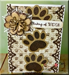 Pampered Pooch Collection – Dog Paws Thinking of You!